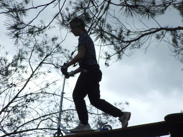 Trotinette dans les arbres