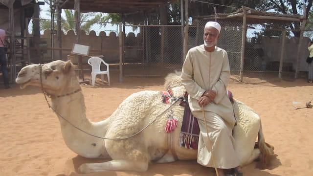 Un bédouin et son chameau dans le Village Héritage
