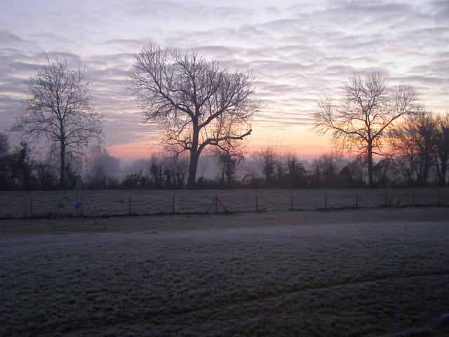 Un calme matin de décembre