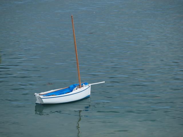 Un canot chausiais.