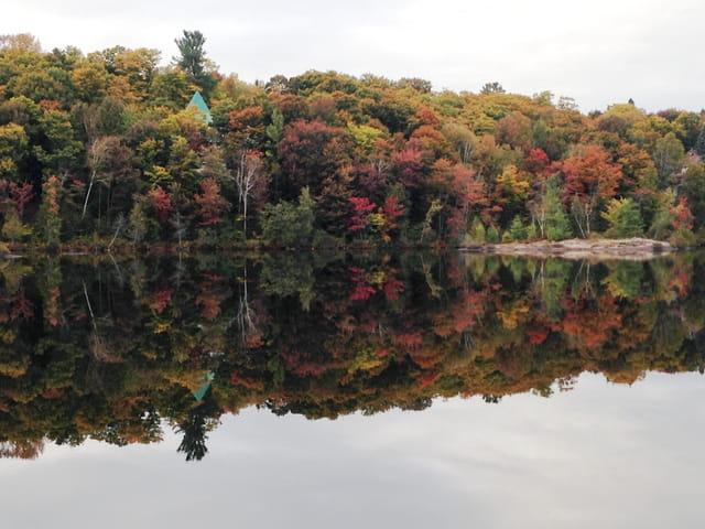 Un dernier tour de lac