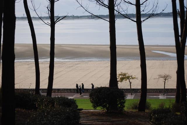 un dimanche de décembre au bord du Bassin d'Arcachon
