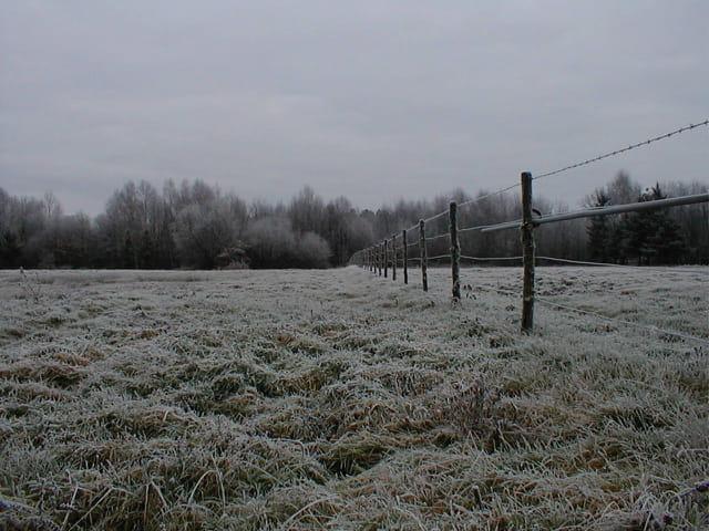 Un hiver dans le Berry