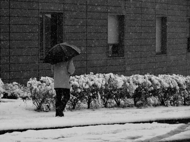 Un hiver en Deux Sèvres.