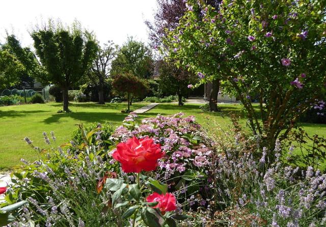 Un jardin en normandie 1 14 08 2016 par jacqueline for Jardin jardinier normandie