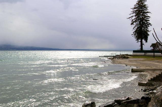 Un lac agité par le vent