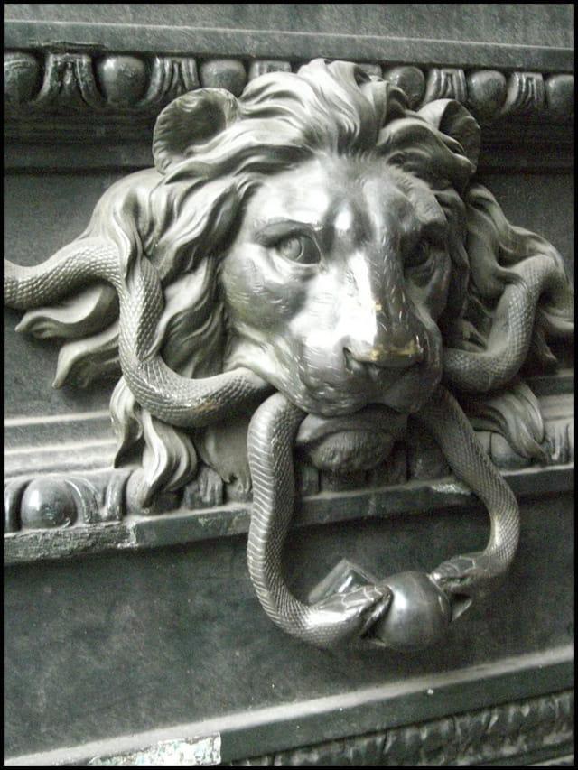Un lion vorace
