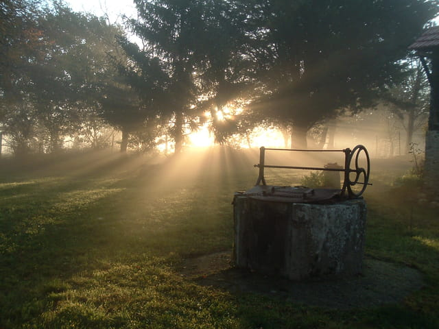 Un matin d' autonne