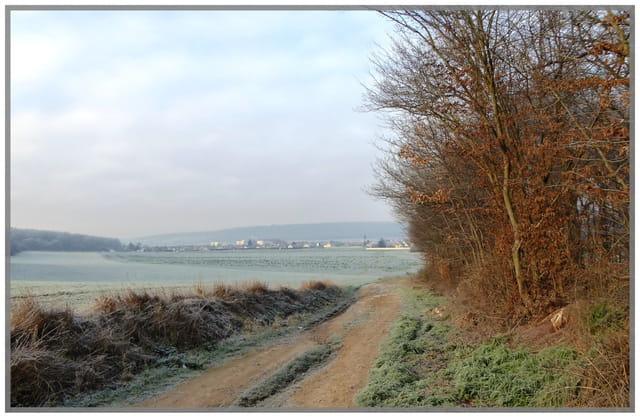 Un matin d'hiver et de givre en Normandie
