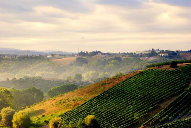 Un matin en Toscane ...