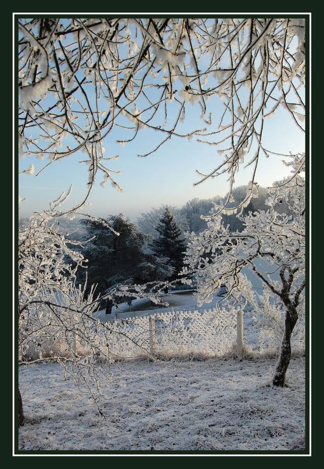 Un matin givré de décembre