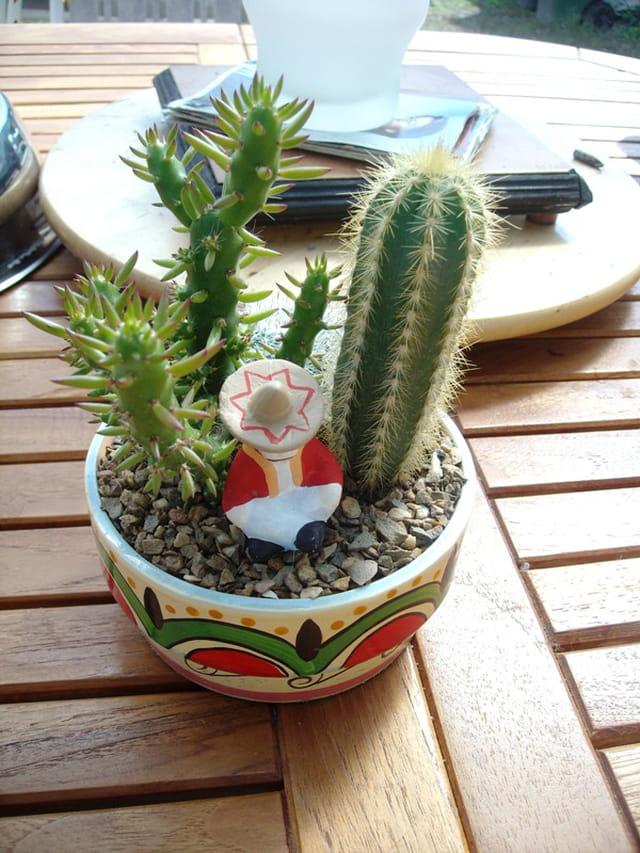 Un Mexicain endormi dans les cactus