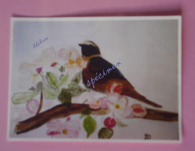 un oiseau en carte postale copie de mon aquarelle