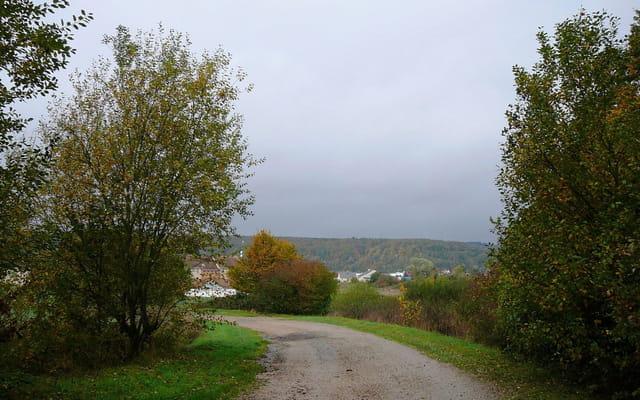 Un petit chemin en automne - 2