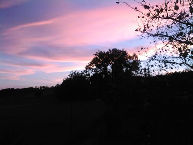 Un soir de Juillet en Dordogne