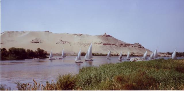 Une balade le long du Nil
