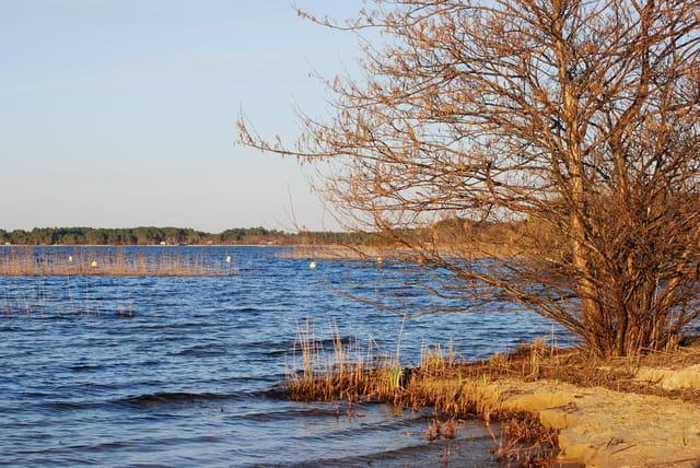 Une journée ensoleillée de mars au bord du lac