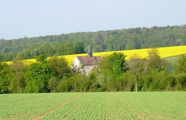 Une petite église au milieu des champs