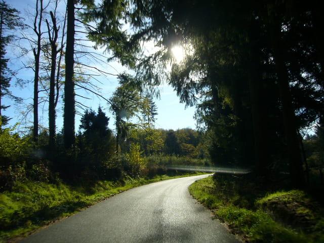 Une petite route de campagne