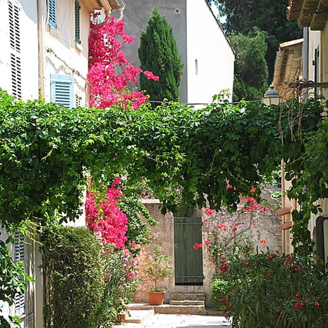 Une ruelle à saint-Tropez