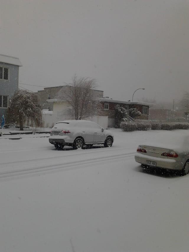 Une tempête de neige... le mardi 9 avril 2019
