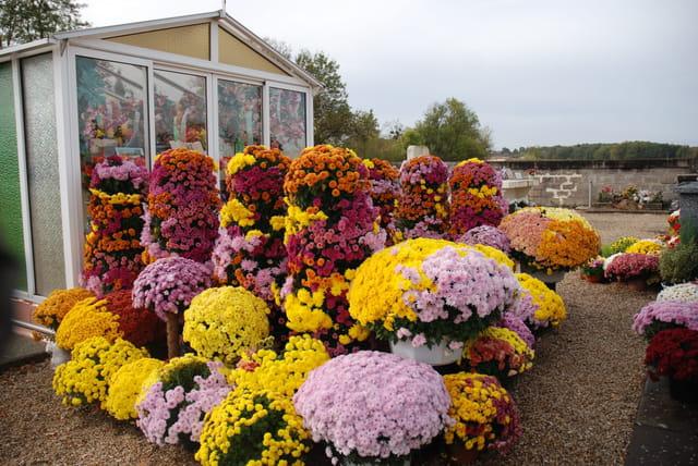 une tombe qui déborde de fleurs