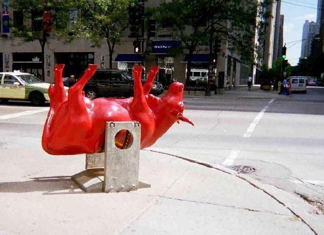 Une vache à Chicago