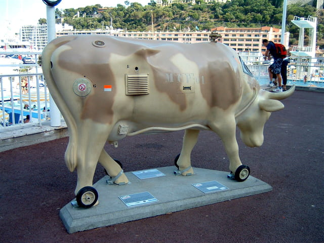Vache de combat