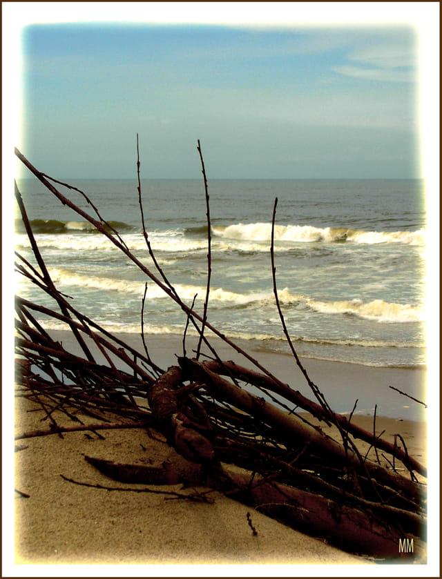 vagues à l'âme...MM
