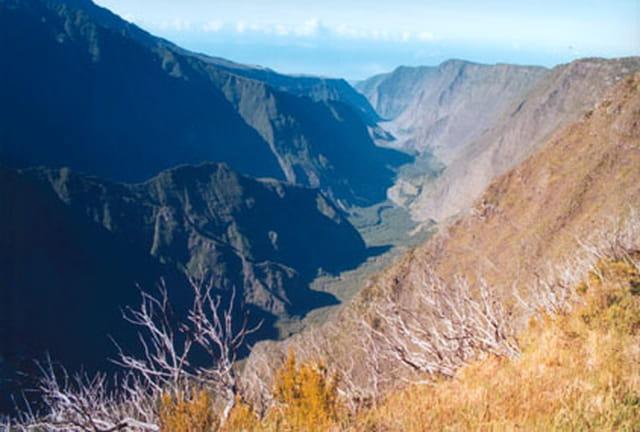 Vallée bleutée