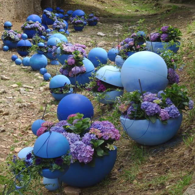 variations bleues à la fête des fleurs