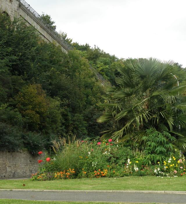 Végétation urbaine luxuriante, au Pecq