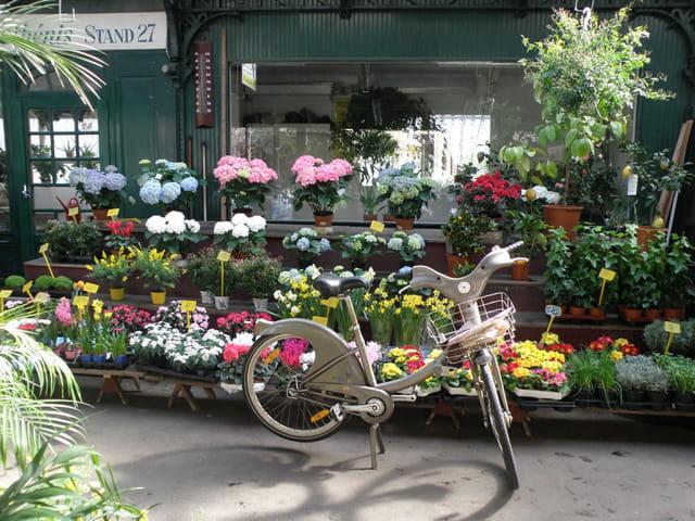 Vélib' au Marché aux fleurs