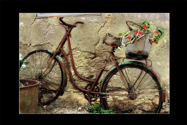 Vélo d'antan