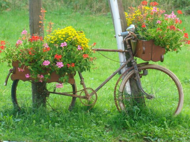 Vélo -jardin