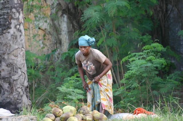 Vendeuse de coco