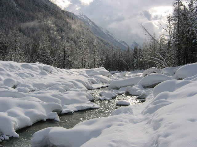 Vents de neige