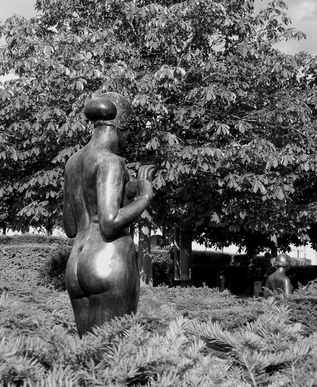 Vénus au Carrousel