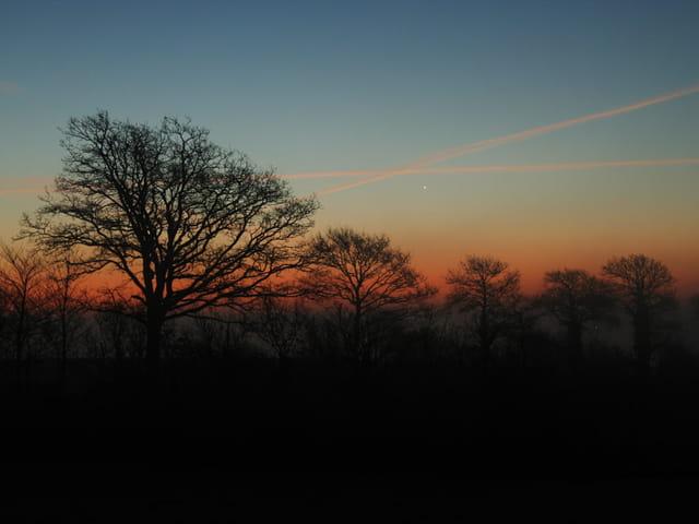 Vénus dans le crépuscule du matin