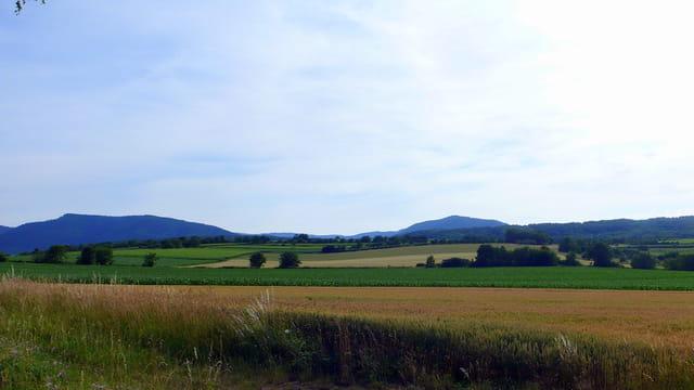 Vers les Vosges...