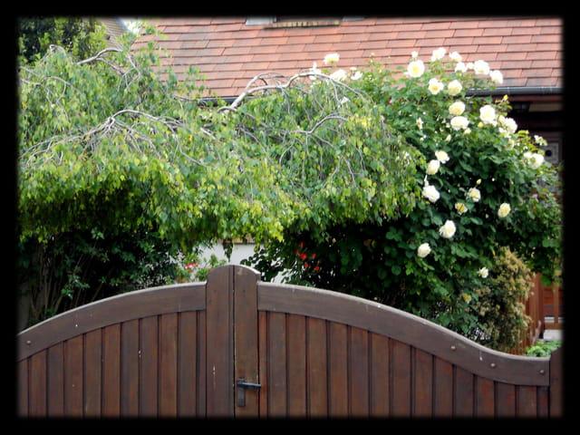 Vgx-Jardins 11 - Indiscrétion