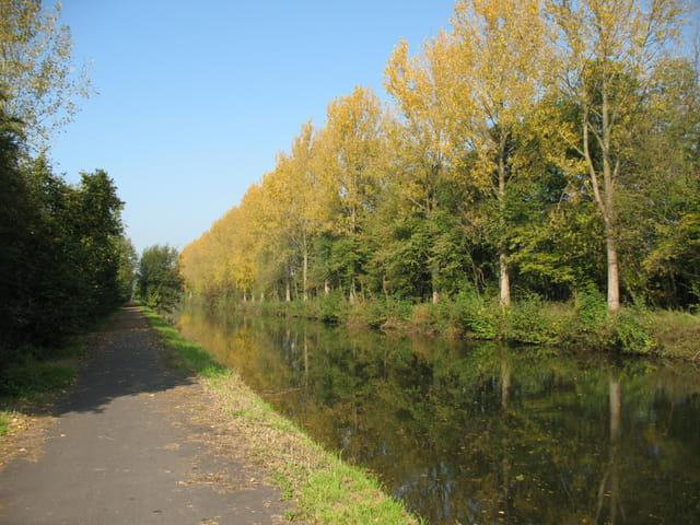 Vieux canal en automne
