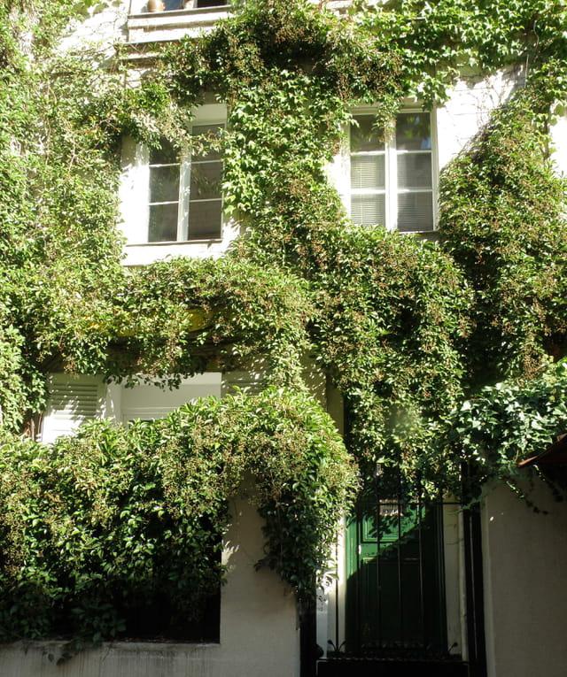Villa verte, Rue Dancourt