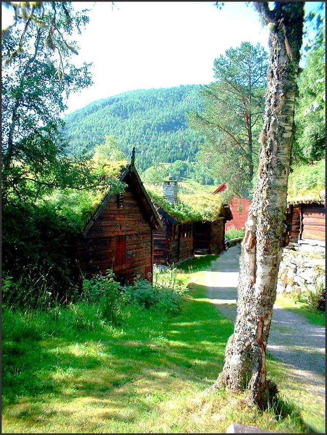 Village aux toits de tourbe fleurie