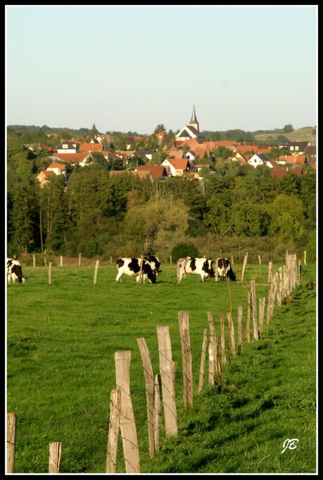 Village du Bas-Rhin...
