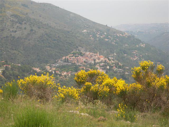 Village sur les auteurs de Nice