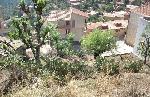 Village tabourt