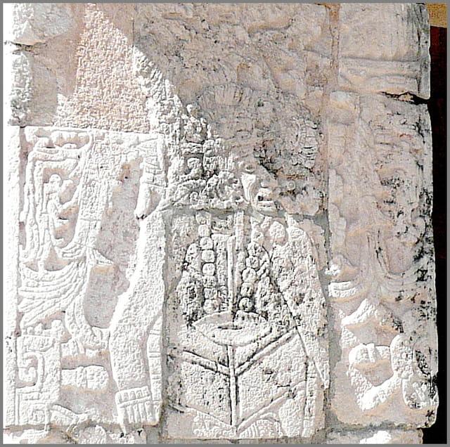 Visage de Maya