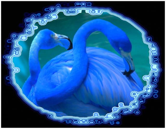 Vision bleue