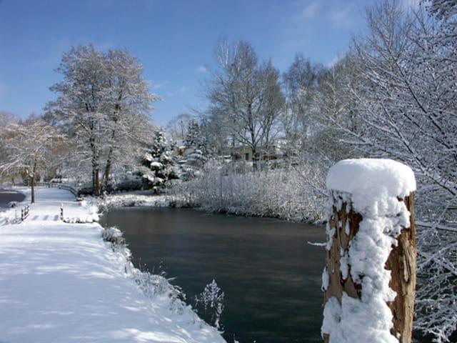 Vision d'hiver